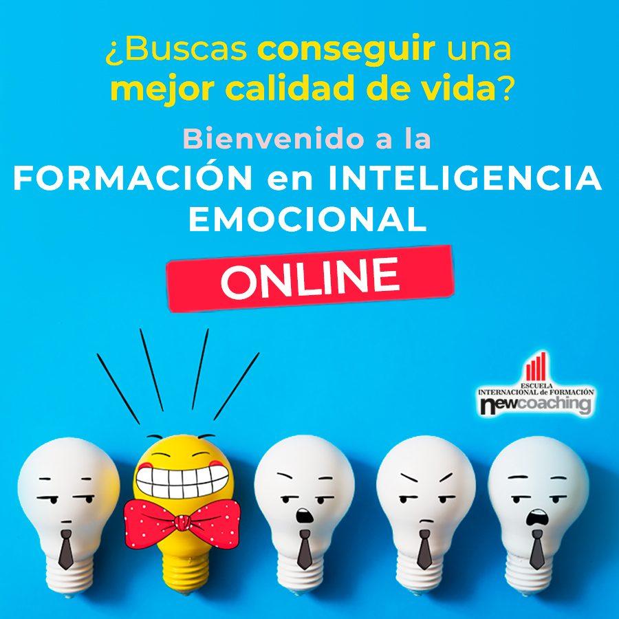 FIE_online